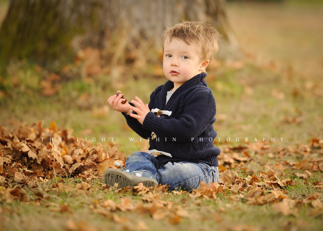 toddler collecting acorns under a tree, child photography Victoria BC